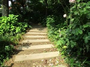 横浜イングリッシュガーデン IMG_0904_R