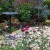実家の庭の大改造⑯ 2番花&途中経過