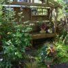 朝の庭と失敗