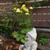 DIYで改造中の実家の庭の今&ラックス